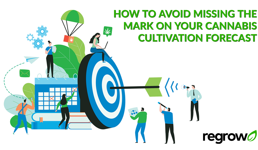 How to Avoid Missing the Mark on your Cannabis Cultivation Forecast