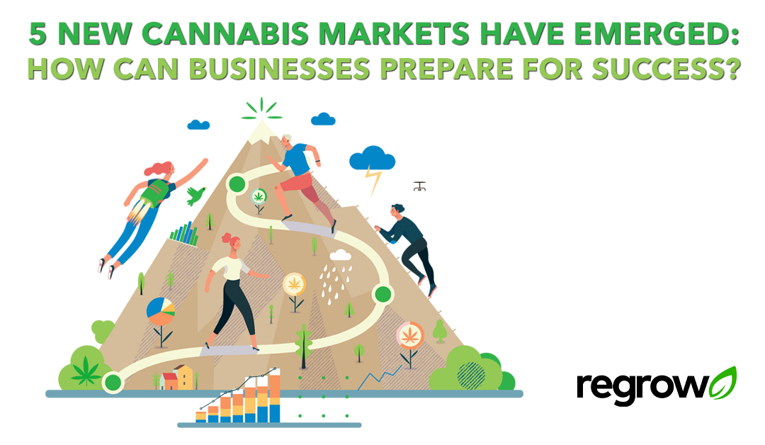 5 New Cannabis Markets Have Emerged: How can businesses prepare for success?