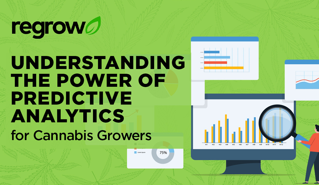 Understanding the Power of Predictive Analytics for Cannabis Growers