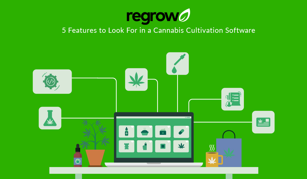 5 Features to Look For in a Cannabis Cultivation Software