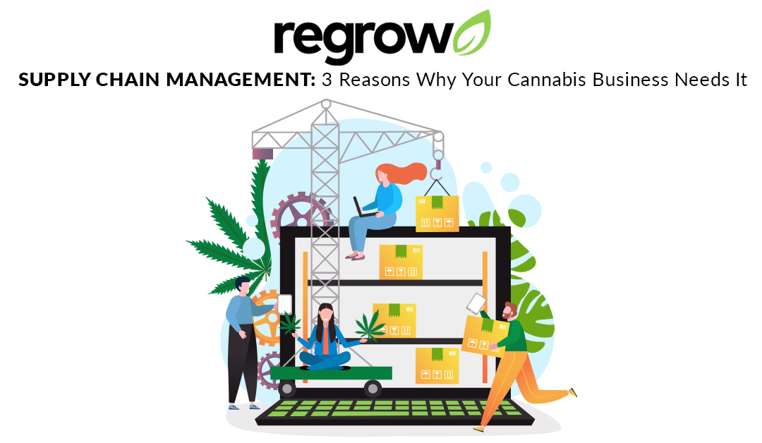 Supply Chain Management: 3 Reasons Why Your Cannabis Business Needs It