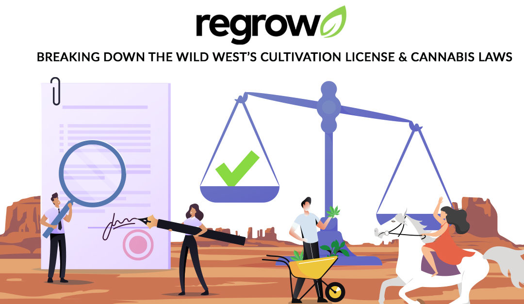 Breaking Down The Wild West's Cultivation License & Cannabis Laws