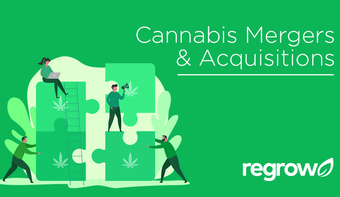 Cannabis Mergers and Acquisitions
